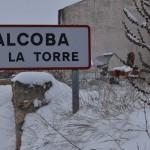nevada 2021 Alcoba