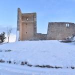 nevada 2021 castillo